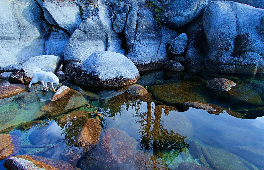 Lake Tahoe Photograph - Sekani Rocks Tahoe by Sean Sarsfield