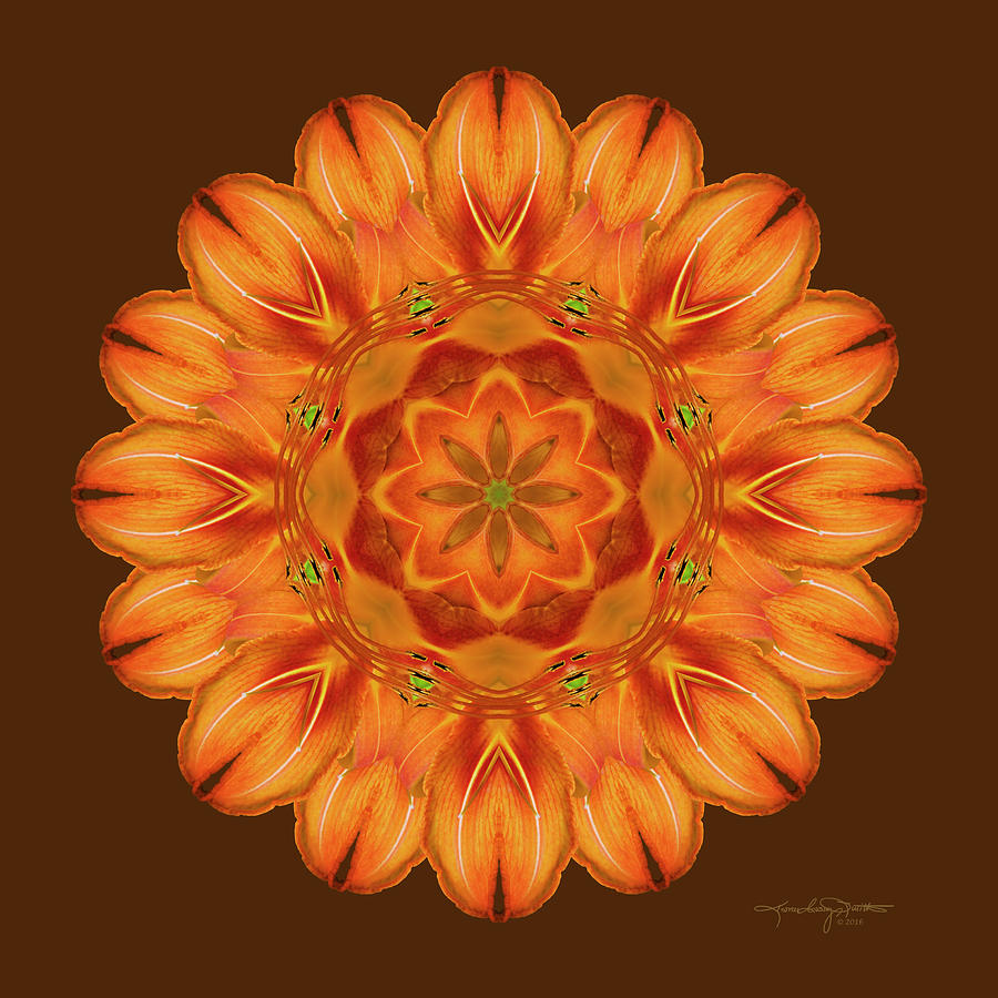 Flower Mandala Photograph - Selus Song by Karen Casey-Smith