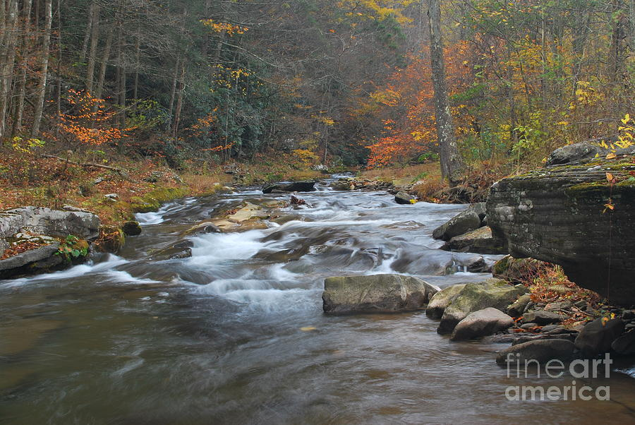 Seneca Creek Photograph - Seneca Creek Autumn by Randy Bodkins