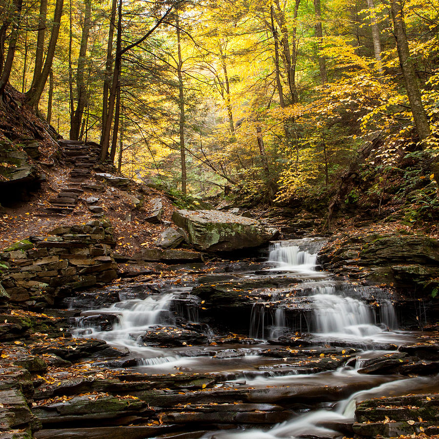 Waterfall Photograph - Seneca Falls by John Daly