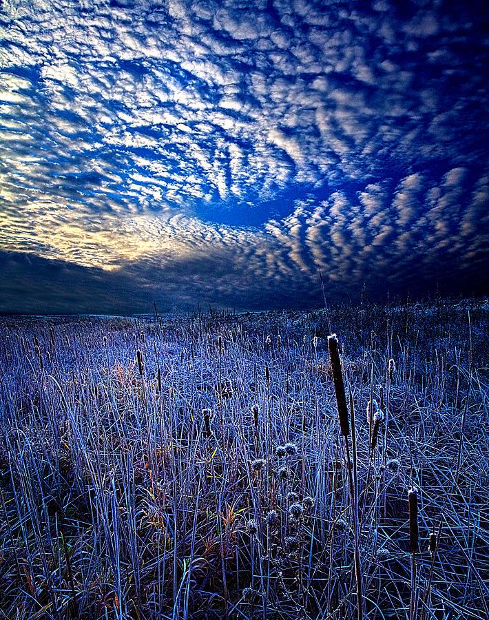 Синий пейзаж картинки