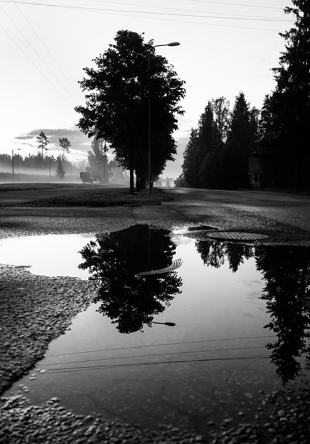 Matti Ollikainen Photograph - Sensory by Matti Ollikainen