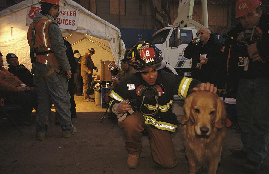 Animals Photograph - September 11th Rescue Workers Receive by Ira Block