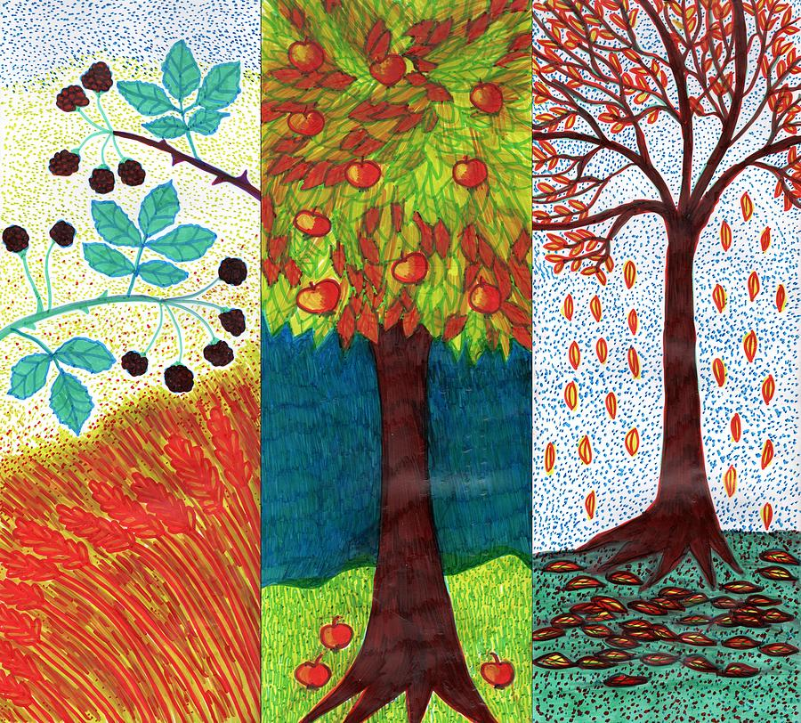 Autumn Drawing - September October November by Sushila Burgess