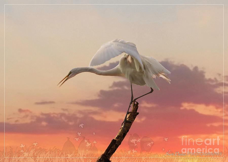 Sepulveda Basin Crane 2 by Scott Parker