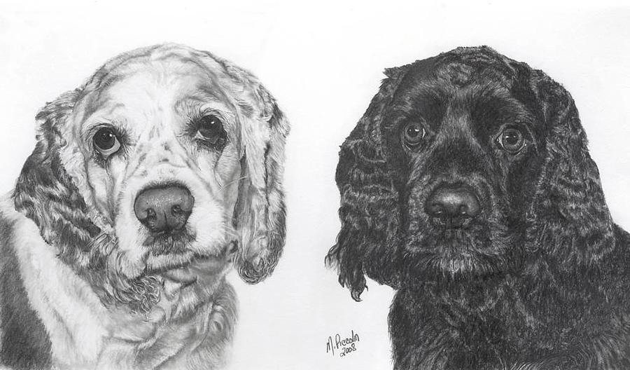 Dogs Drawing - Sere and Cole by Marlene Piccolin