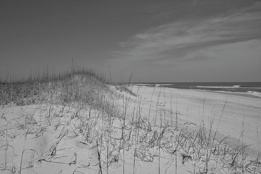 Beach Photograph - Serene Lookout by Betsy Knapp