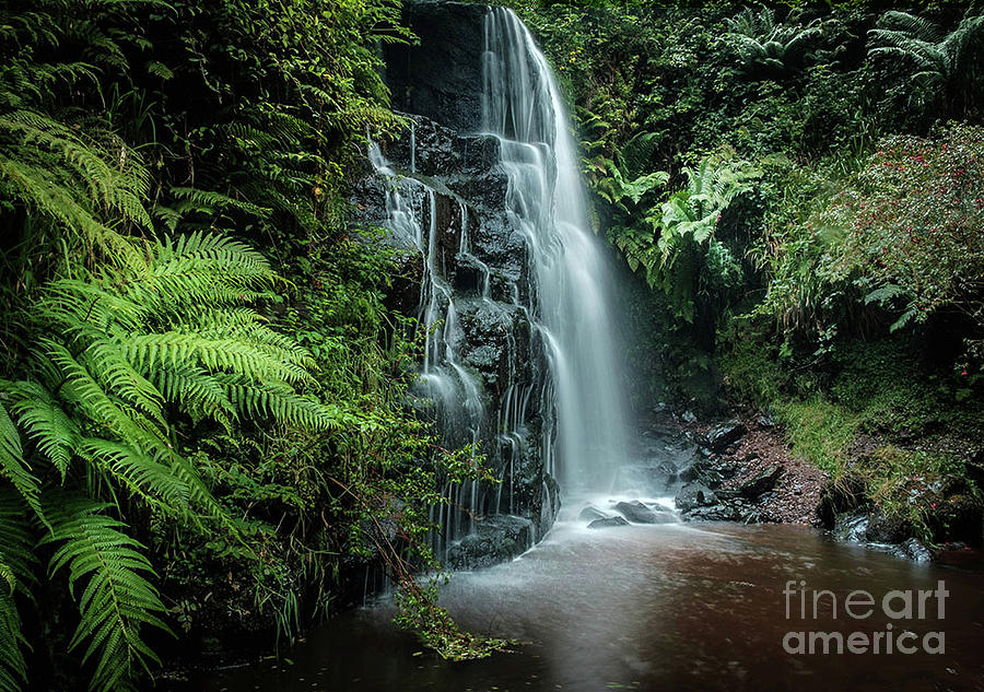 Waterfall Photograph - Serenity by Sinclair Adair