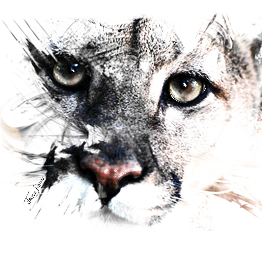 Seriously Cougar by Jackie Flaten