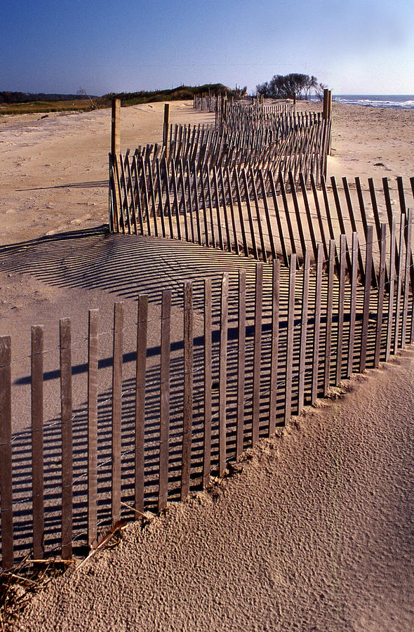 Fence Photograph - Serpentine by Skip Willits