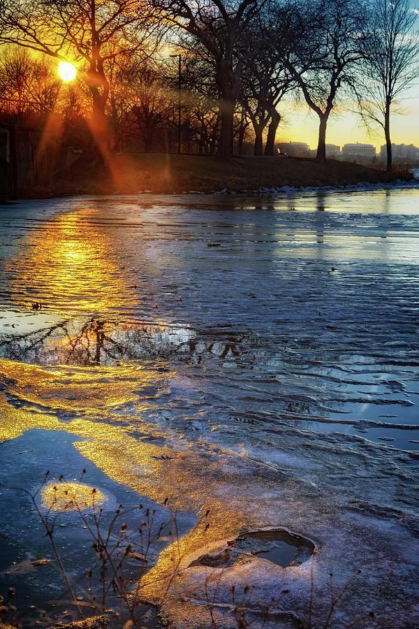 Setting On Thin Ice by Sylvia J Zarco