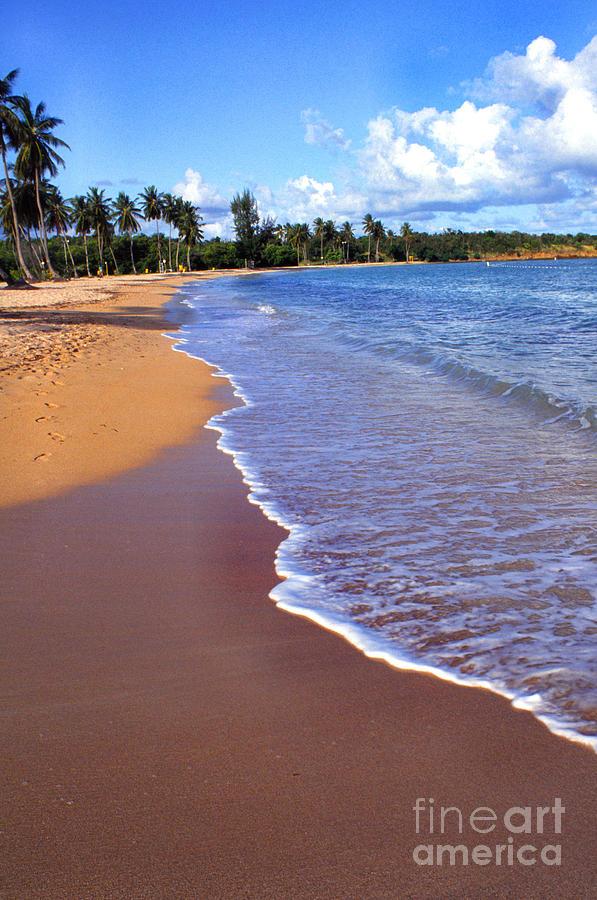 Puerto Rico Photograph - Seven Seas Beach by Thomas R Fletcher