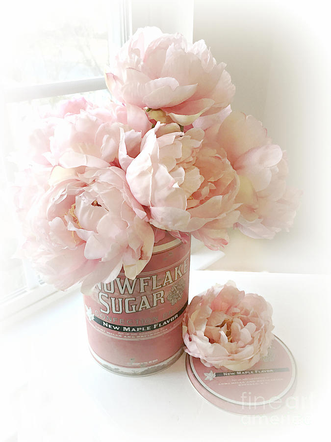 Shabby chic pink pastel peach peonies vintage romantic floral decor shabby chic pink pastel peach peonies vintage romantic floral decor photograph by kathy fornal mightylinksfo