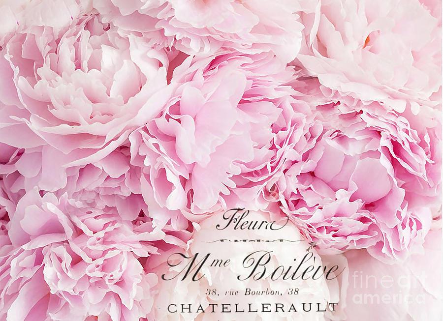 Shabby Chic Pink Pastel Peonies French Script - Paris Pink Peonies Baby  Girl Nursery Decor