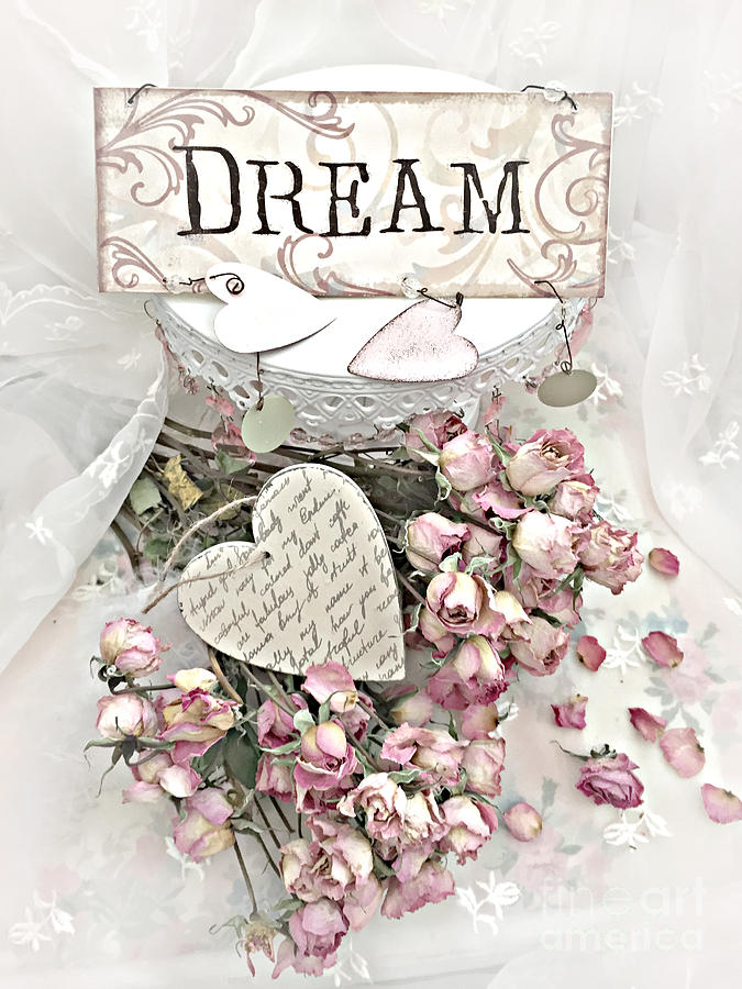 Romantic Photograph - Shabby Chic Romantic Dream Valentine Roses - Romantic Dreamy Roses Valentine Hearts by Kathy Fornal