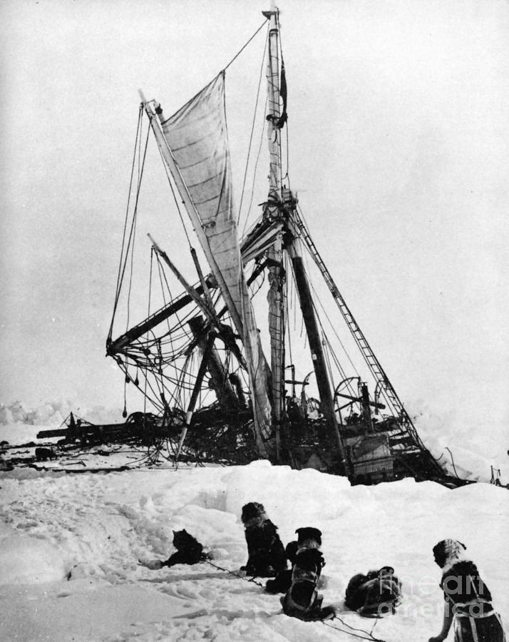 1915 Photograph - Shackletons Endurance by Granger