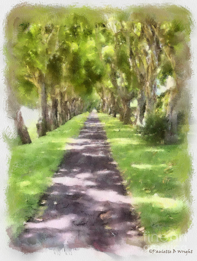 Shaded Walkway To Princeville Market Painting By Paulette B Wright
