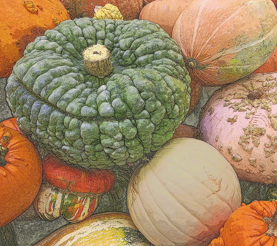 Autumn Photograph - Shades Of Autumn by Suzy Piatt