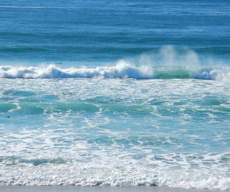 Shades of Blue by My Lens and Eye - Judy Mullan -