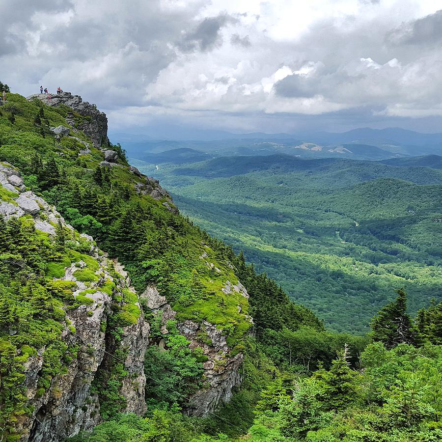 North Carolina Photograph - Shades Of Green by Ric Schafer
