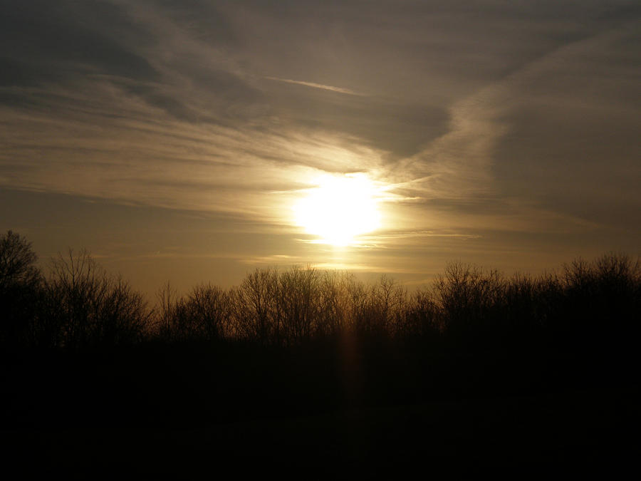 Sunrise Photograph - Shades Of Nights by Martie DAndrea