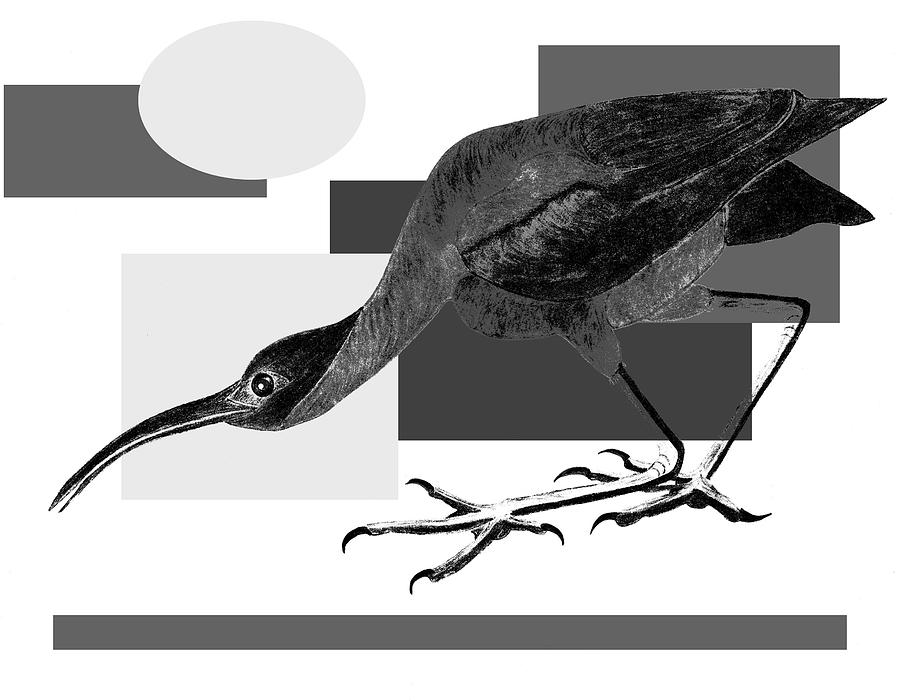 Bird Painting - Shadow Dancing by Tess M J Iroldi
