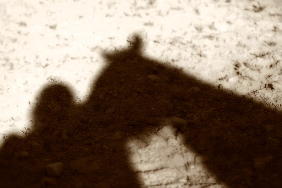 Shadow Photograph - Shadow Of Horse And Girl by Angela Rath