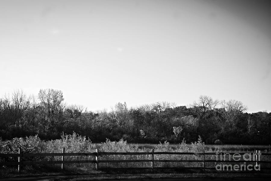Illinois Photograph - Shadow on the Fence by Frank J Casella