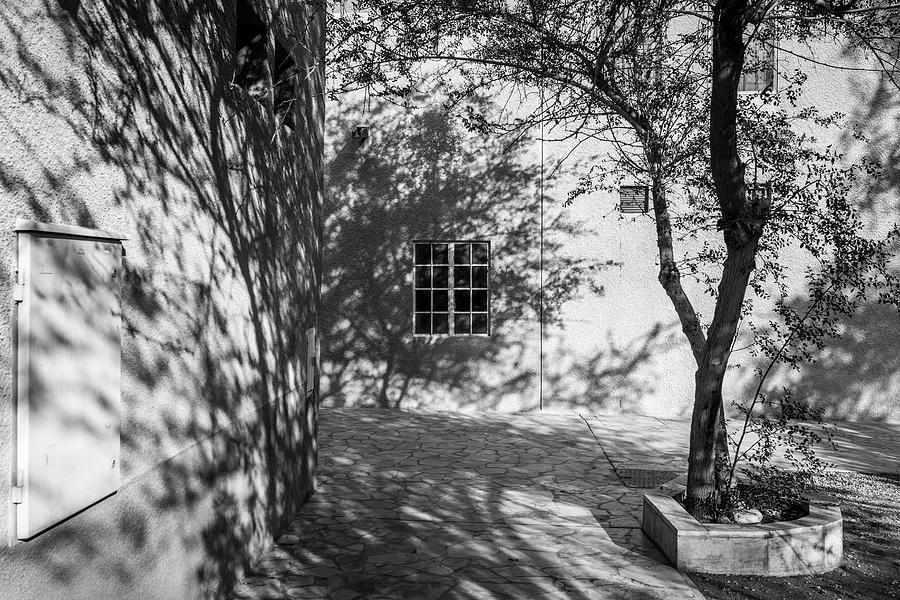 Shadow Play by Sam Morris