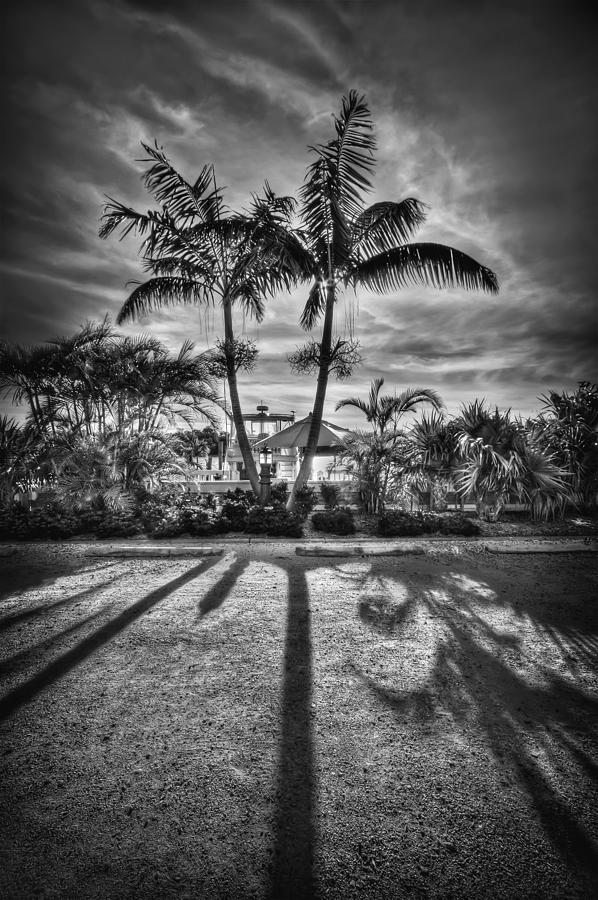 Boca Grande Photograph - Shadow Waltz by Evelina Kremsdorf