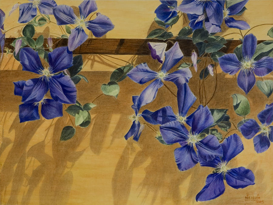 Clematis Painting - Shadows Dancing by Nik Helbig