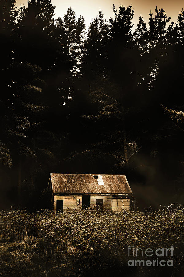Australian Photograph - Shadows Of Mornings First Light by Jorgo Photography - Wall Art Gallery