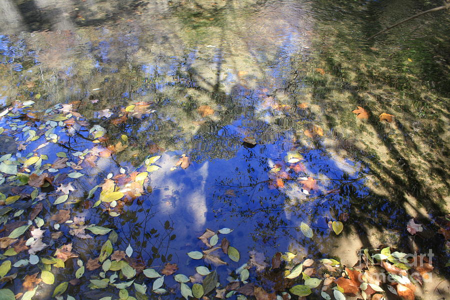 Water Photograph - Shadows Of Time by Monica Smith