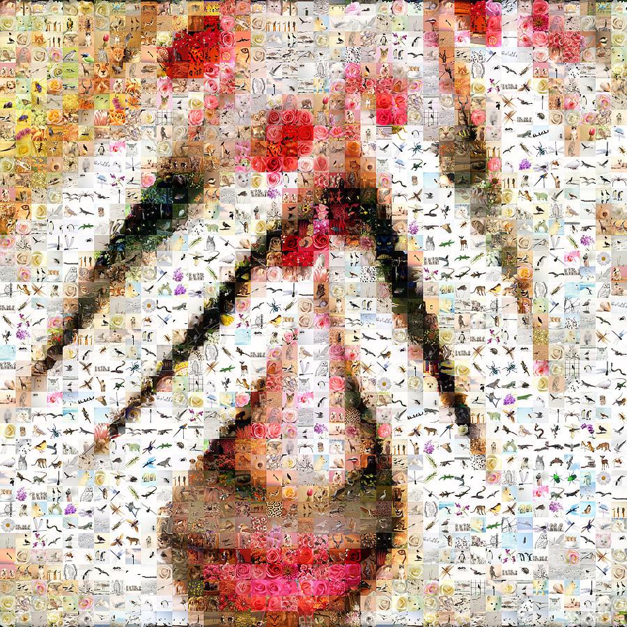 Mosaic Digital Art - Shamed by Gilberto Viciedo