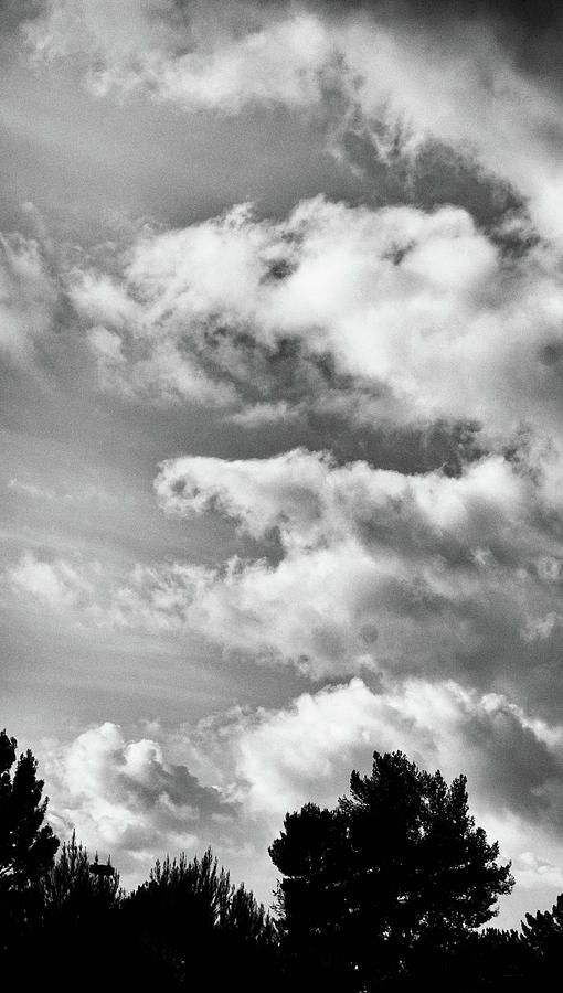 Lake Balboa Park Photograph - Shapes In The Clouds by Matthew Nelson