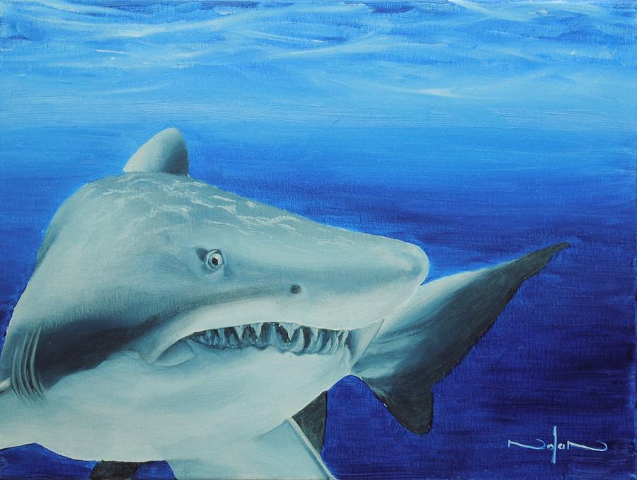 Oil Painting - Shark by Nolan Clark