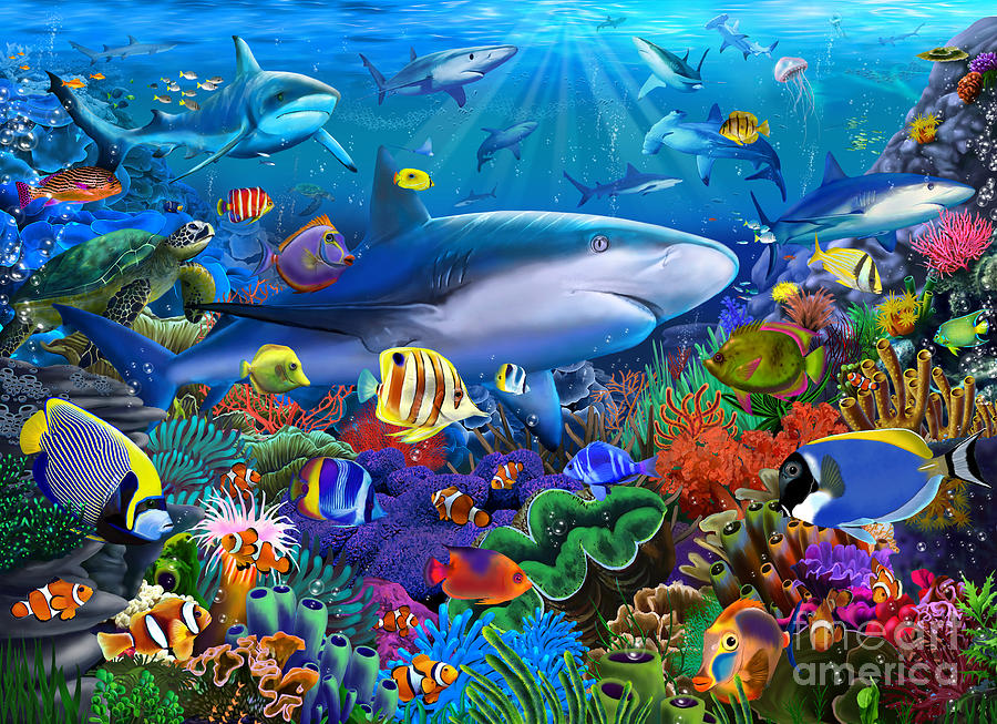 Shark Reef Digital Art By Mgl Meiklejohn Graphics Licensing