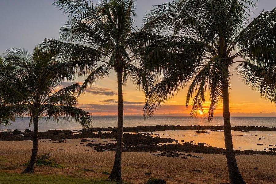 Palm Trees Photograph - Sharks Cove Sunset 4 - Oahu Hawaii by Brian Harig