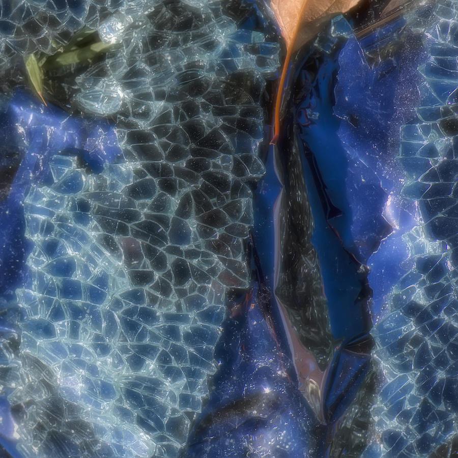 Shattered Photograph - Shattered II by Paula Barrickman