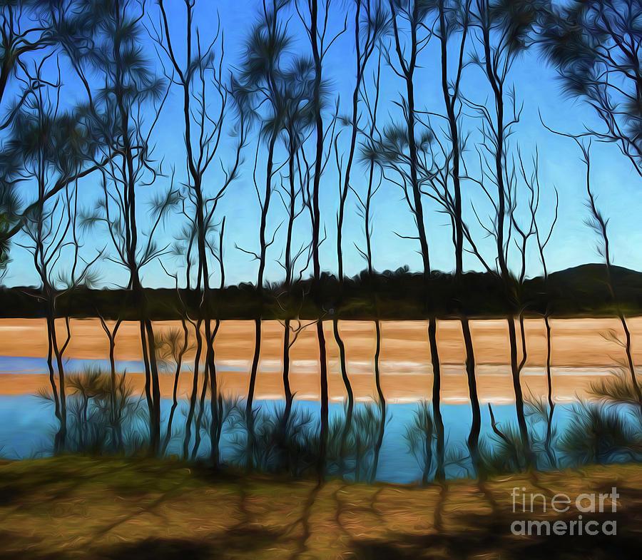 She Oak Photograph - She Oaks At Red Rock by Sheila Smart Fine Art Photography
