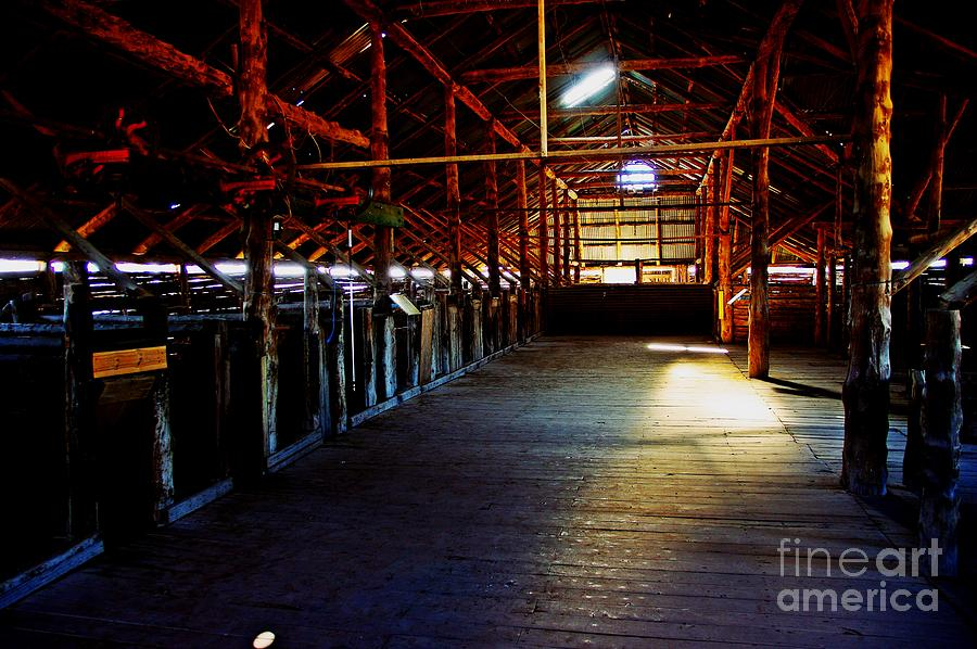 Shearing Shed Photograph - Shearing Shed From A Bygone Era by Blair Stuart