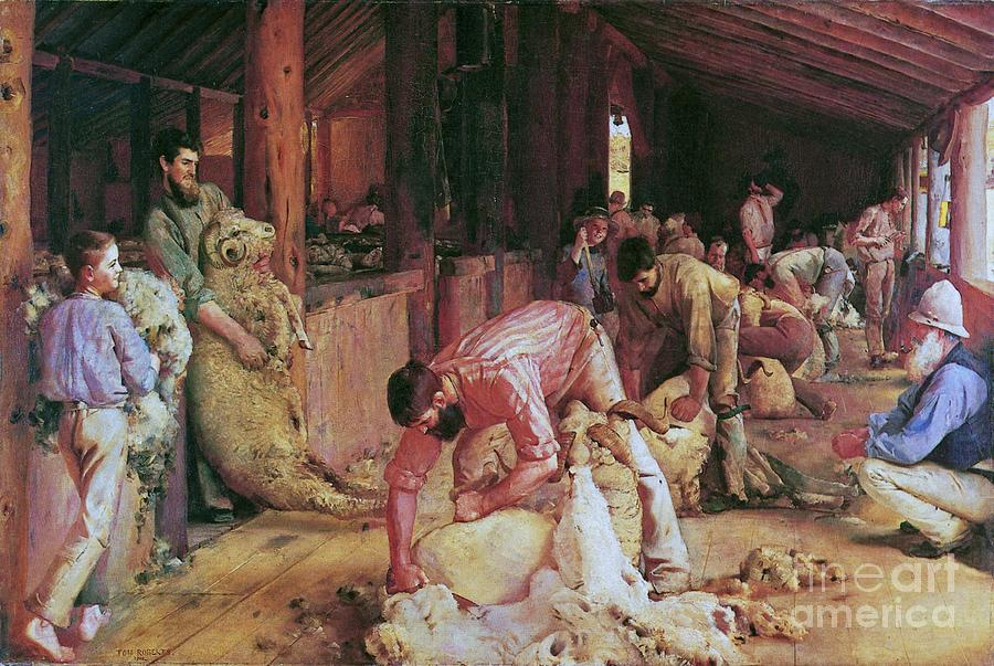 Pd Painting - Shearing The Rams by Pg Reproductions