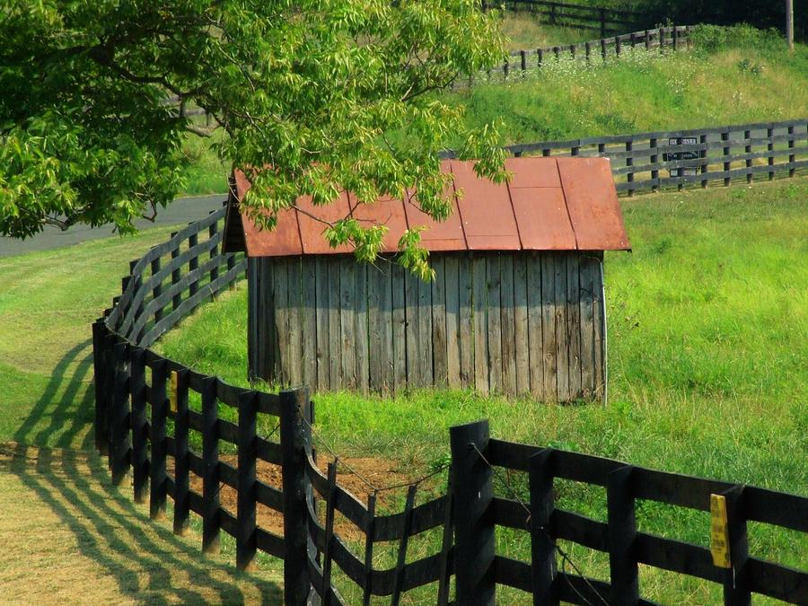 Fence Photograph - Shed And Fence by Michael L Kimble