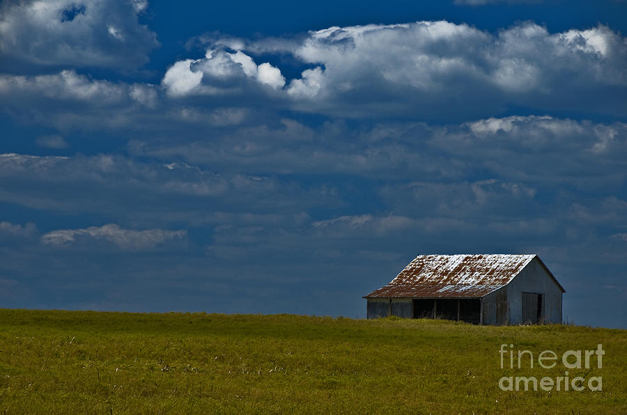 Farmland Photograph - Shed In The Light by Susan Yates