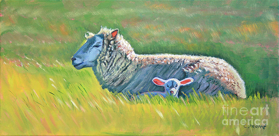 Sheep Painting - Sheep At Red Hill Farms by Colleen Proppe