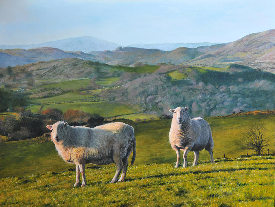 Landscape Painting - Sheep At Rhug by Harry Robertson