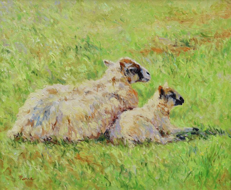 Sheep in the spring time,La vie est belle by Pierre Van Dijk