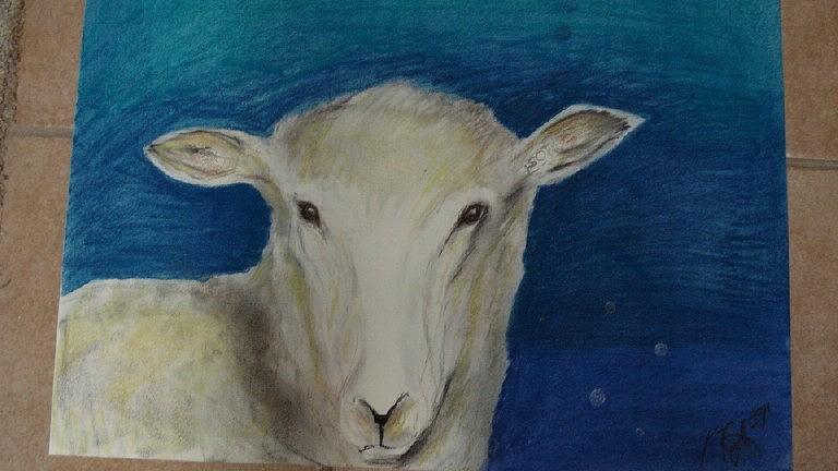Animal Pastel - Sheep by Kate Padberg