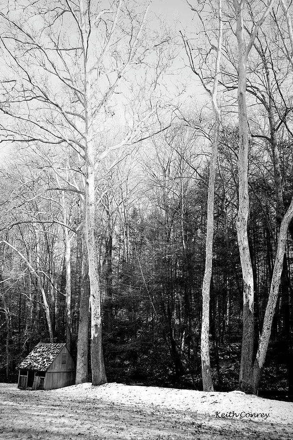 Meadow Photograph - Sheep Meadow 3 by Keith Conrey