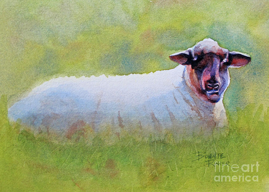 Sheep of His Pasture by BONNIE RINIER